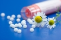 Chamomile flower and homeopathic medication
