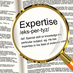 Expertise thesis