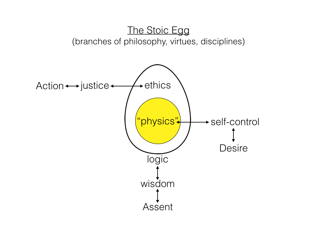 The stoic egg scientia salon stoic egg pooptronica