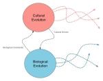 Dual-Evolution-System